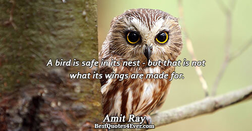 A bird is safe in its nest - but that is not what its wings are