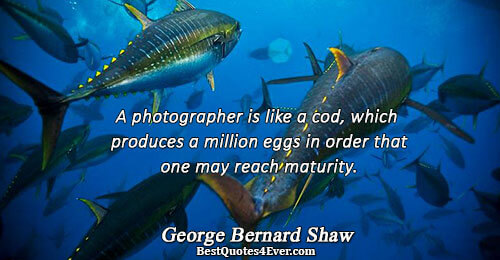 A photographer is like a cod, which produces a million eggs in order that one may