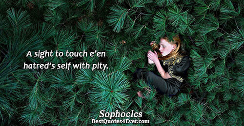 A sight to touch e'en hatred's self with pity.. Sophocles Quotes About Hate