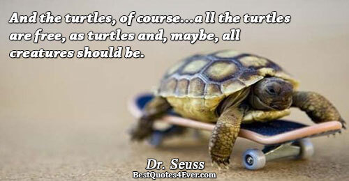 And the turtles, of course...all the turtles are free, as turtles and, maybe, all creatures should