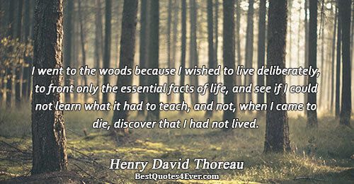 I went to the woods because I wished to live deliberately, to front only the essential