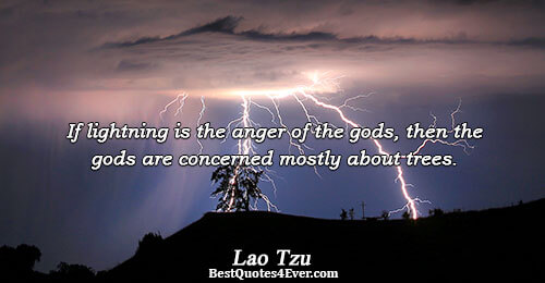 If lightning is the anger of the gods, then the gods are concerned mostly about trees..