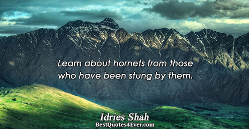 Learn about hornets from those who have been stung by them.. Idries Shah Knowledge Messages