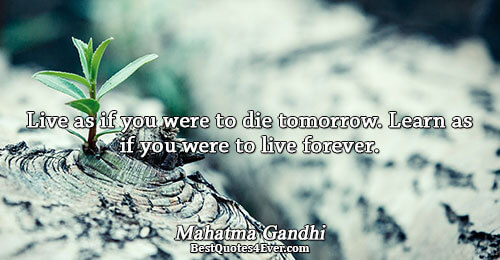 Live as if you were to die tomorrow. Learn as if you were to live forever..
