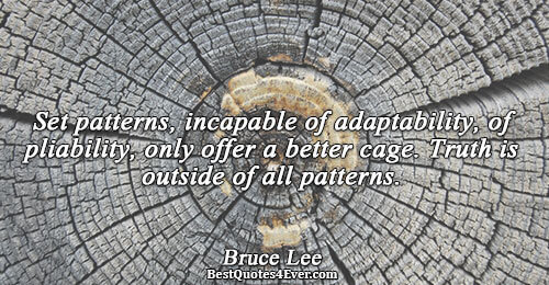 Set patterns, incapable of adaptability, of pliability, only offer a better cage. Truth is outside of