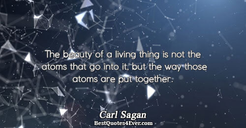 The beauty of a living thing is not the atoms that go into it, but the