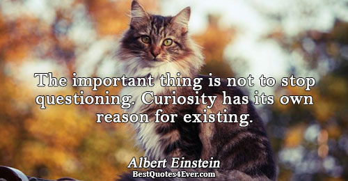 The important thing is not to stop questioning. Curiosity has its own reason for existing.. Albert